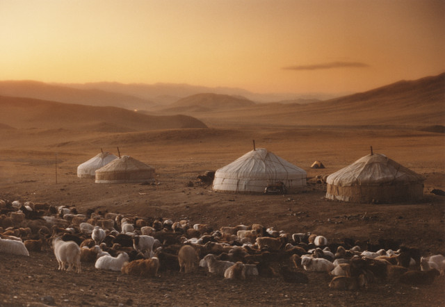 Are Global Nomads The New Norm? - Third Culture Kids ...